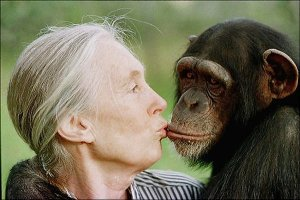 Jane Goodall and Tess
